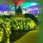 Photo courtesy of Cleveland Botanical Garden