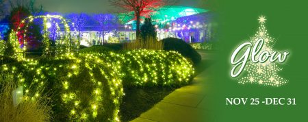Wonderful lighting in Cleveland Botanical Garden